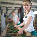 Todo sobre prácticas laborales en las carreras de Veterinaria, Agronomía y Zootecnia en Rusia