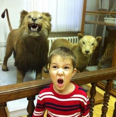 Museo Zoológico de la universidad de URFU