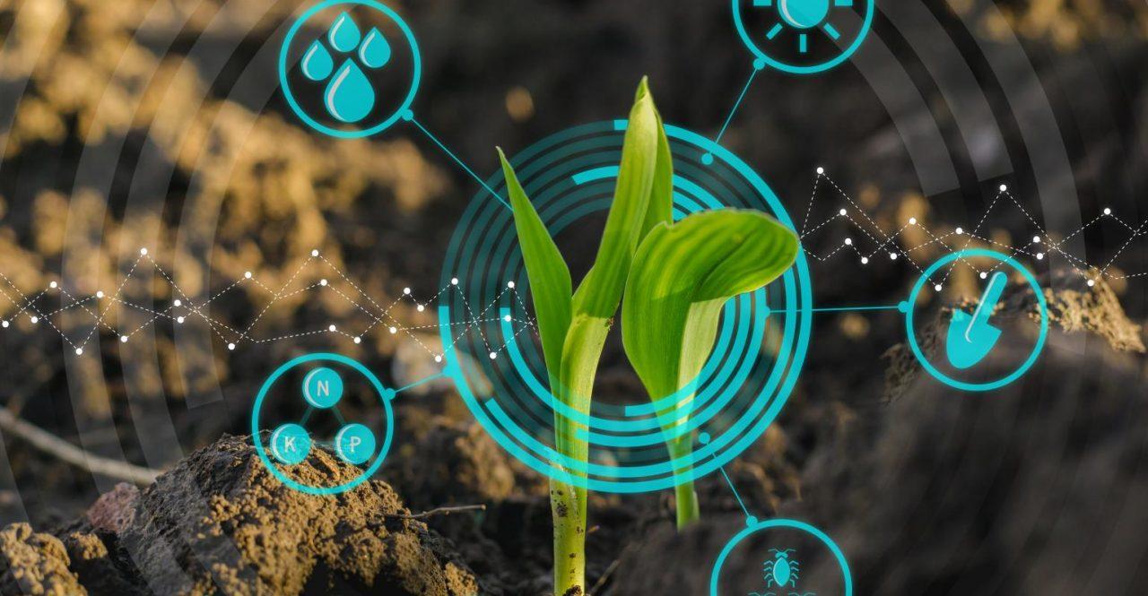 La agroindustria de Rusia cada vez de asemeja más a una película futurista de ciencia ficción
